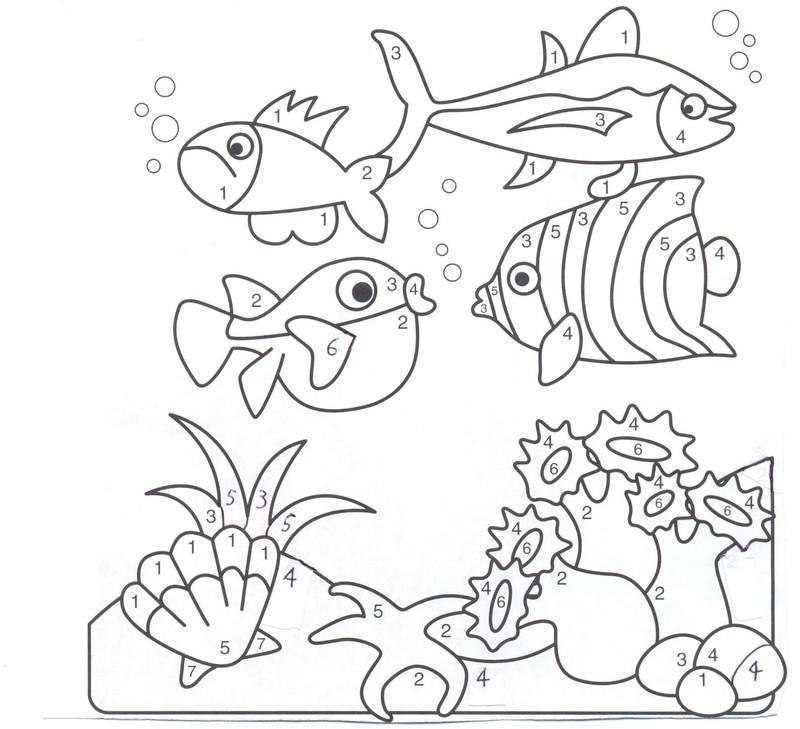 dessin étoile de mer