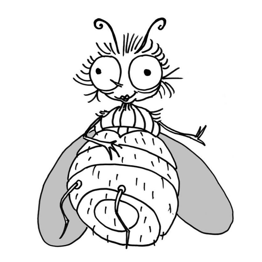 Coloriage dessiner d 39 une mouche - Oiseau mouche dessin ...