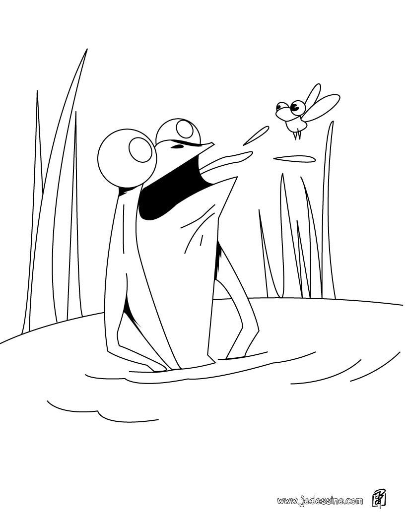 Coloriage dessiner mouche a imprimer gratuit - Dessin de mouche ...