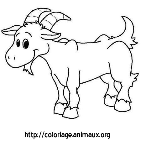 16 dessins de coloriage mouton avec cornes imprimer - Mouton dessin ...