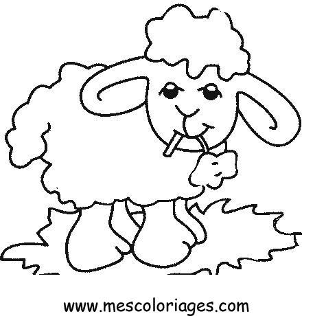 Dessin colorier troupeau de mouton - Dessin mouton rigolo ...
