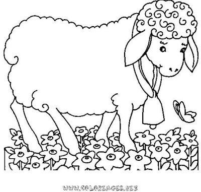 Coloriage Mouton Colorier Les Enfants Marnfozinecom