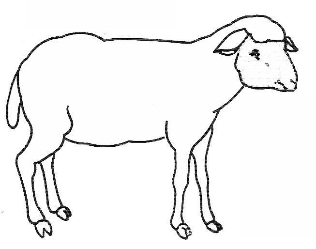 Coloriage russell le mouton - Mouton a dessiner ...