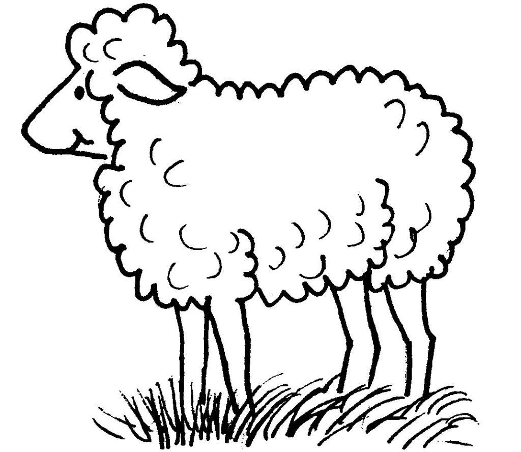 Imprimer coloriage dessiner mouton - Mouton a dessiner ...