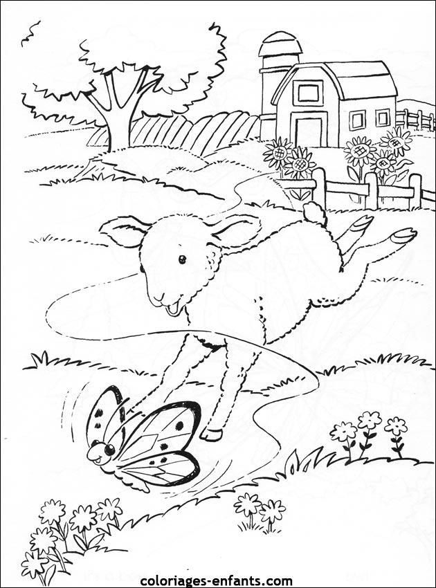 Coloriage A Dessiner D Un Mouton Dans Une Prairie