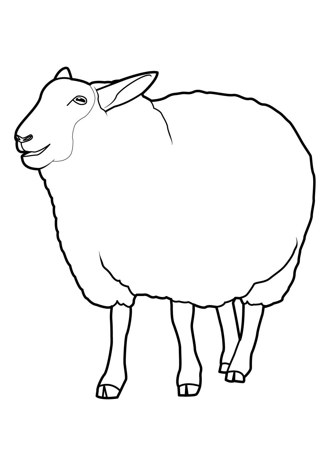 jeux de dessin à colorier de mouton gratuit