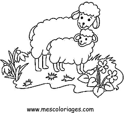Imprimer coloriage dessiner mouton - Mouton en dessin ...
