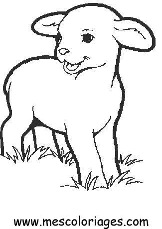 Coloriage A Dessiner Mouton Et Agneau