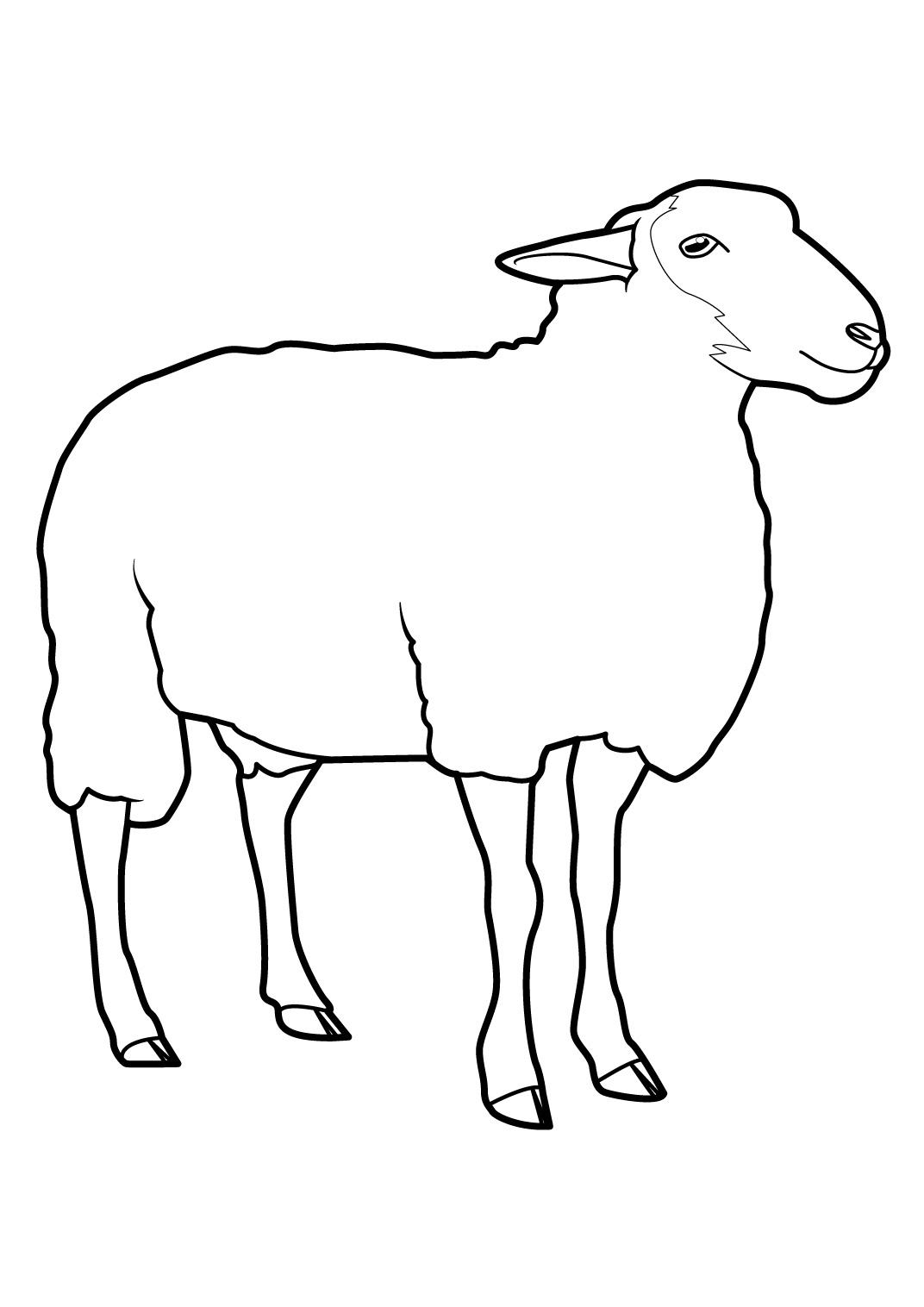 dessin shaun le mouton en ligne