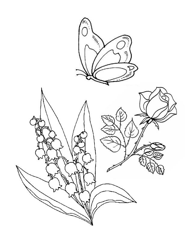 coloriage à dessiner muguet nounou du nord