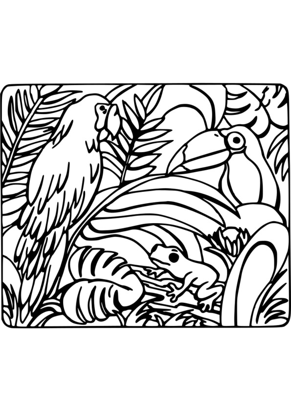 coloriage nature adulte