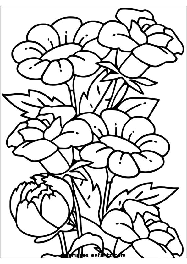Coloriage de la nature a imprimer gratuit - Coloriage nature a imprimer ...