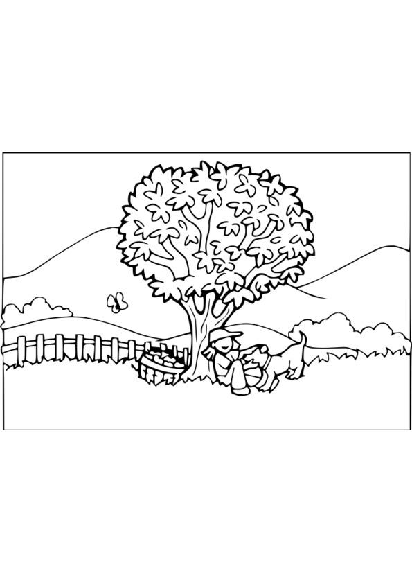 coloriage nature en ligne