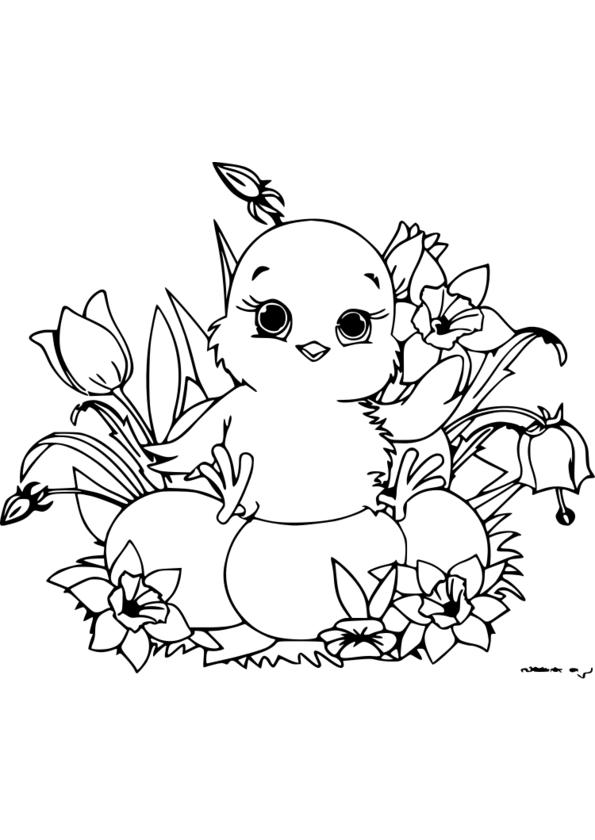 coloriage à dessiner nature a imprimer gratuit