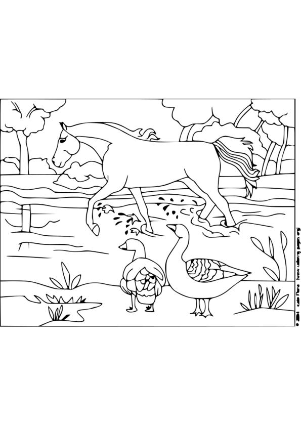 dessin à colorier a imprimer paysage nature