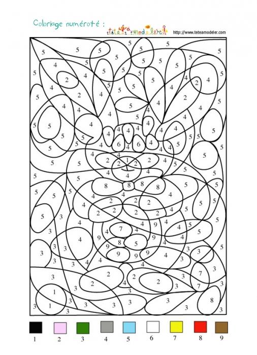 coloriage à dessiner numéroté adulte