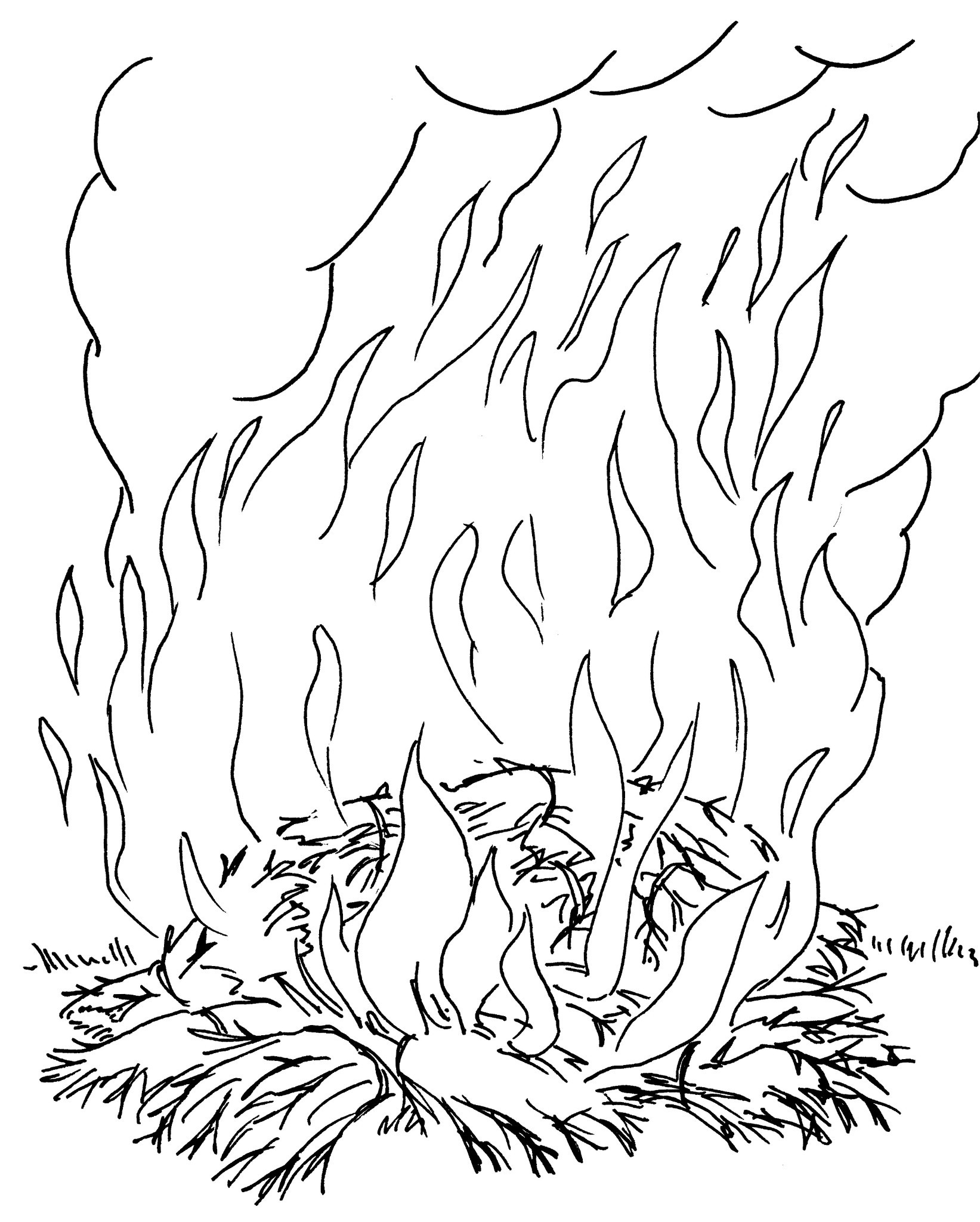 17 dessins de coloriage oiseau de feu imprimer - Coloriage pokemon feu ...
