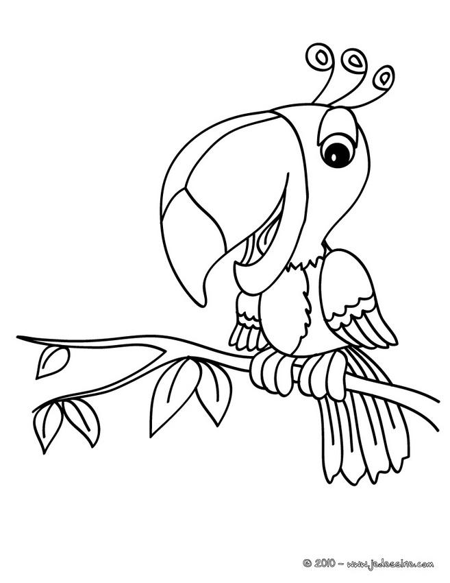 20 dessins de coloriage oiseau en ligne imprimer - Coloriage en ligne adulte ...
