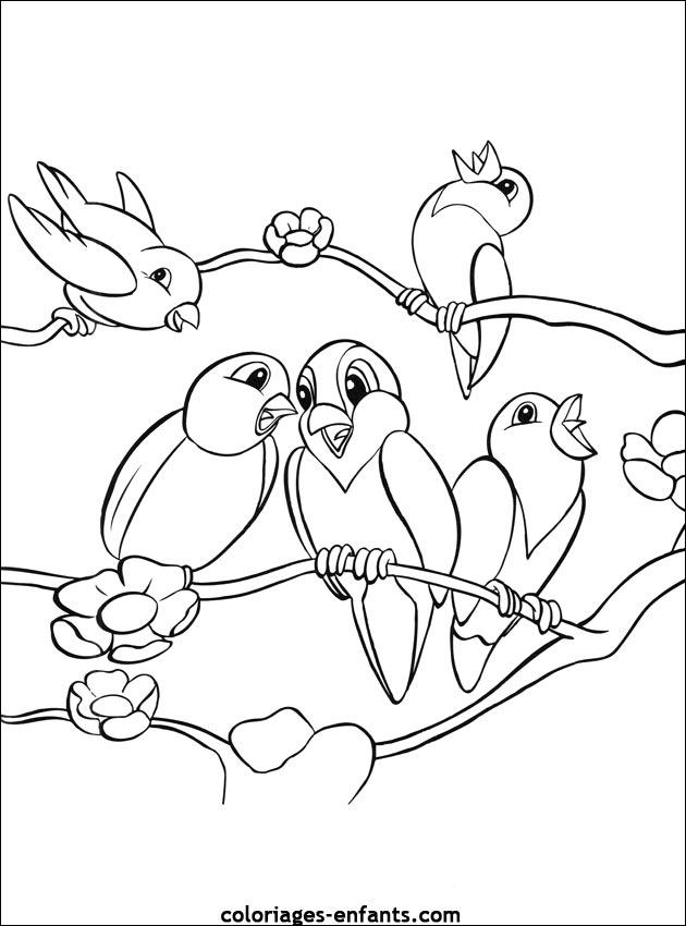 dessin oiseau du monde