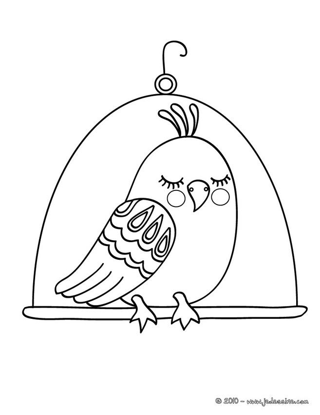 Coloriage Oiseau Sur Arbre.Dessin D Oiseau Sur Un Arbre