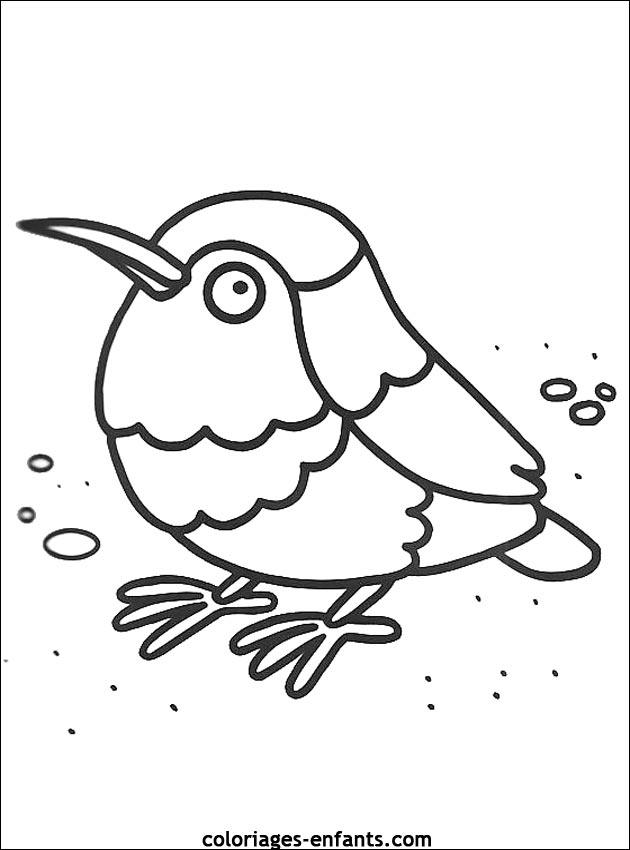 dessin oiseau tropical