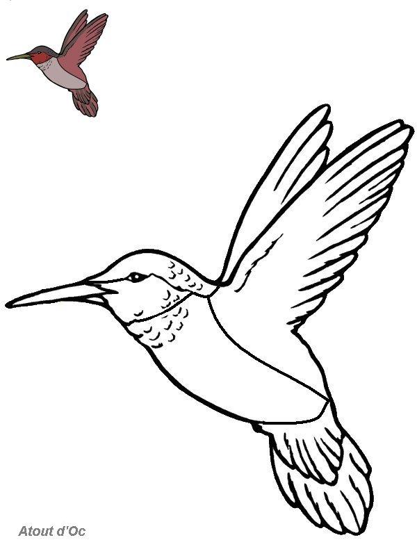 coloriage à dessiner oiseau à imprimer