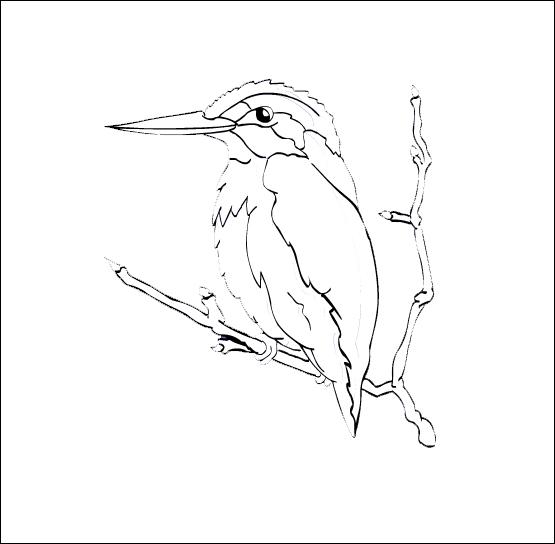 dessin � colorier oiseau en vol