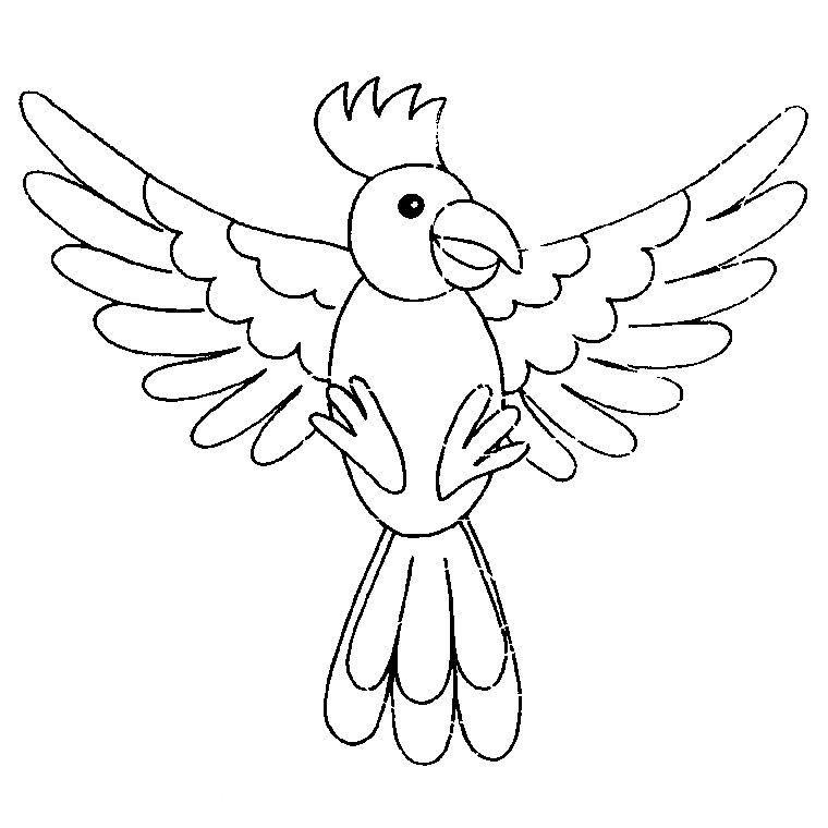 coloriage à imprimer oiseau
