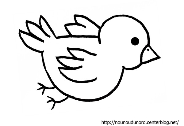 Coloriage Fleur Coucou.Dessin Oiseau Coucou