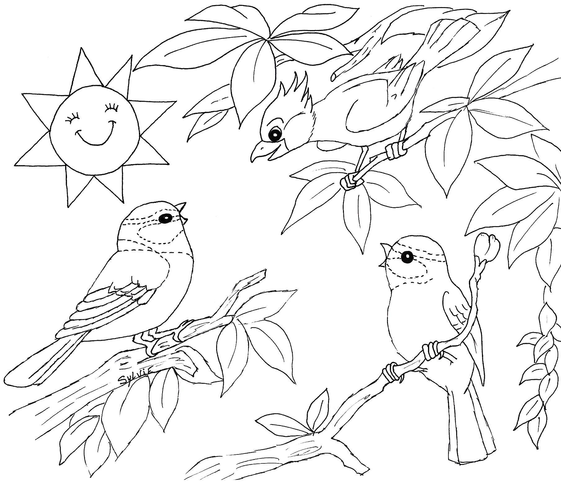 coloriage codé oiseau