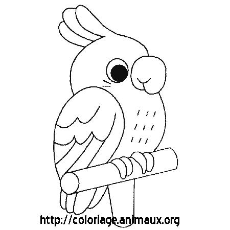 dessin oiseau en ligne gratuit