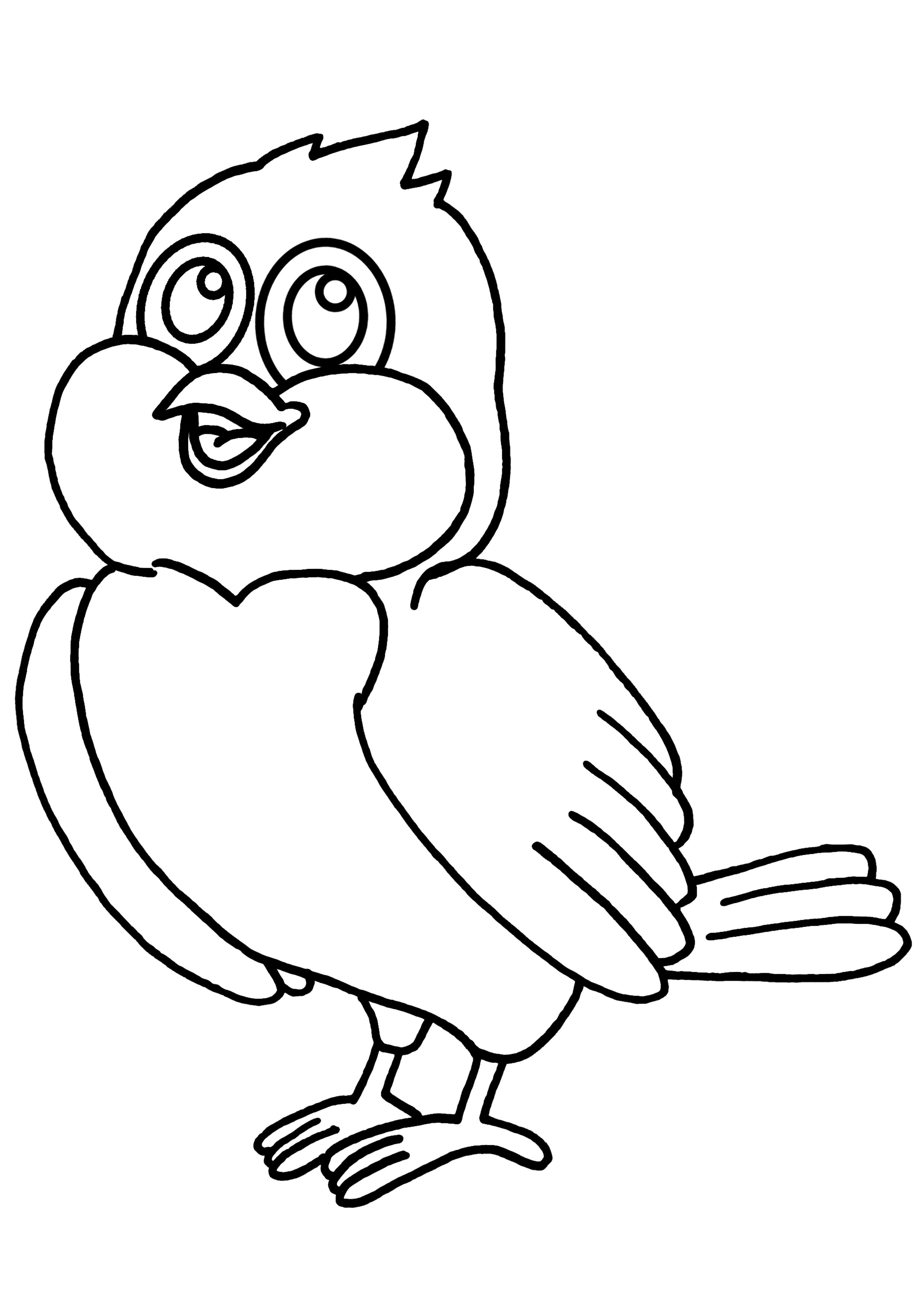 dessin à colorier d'oiseaux sur une branche