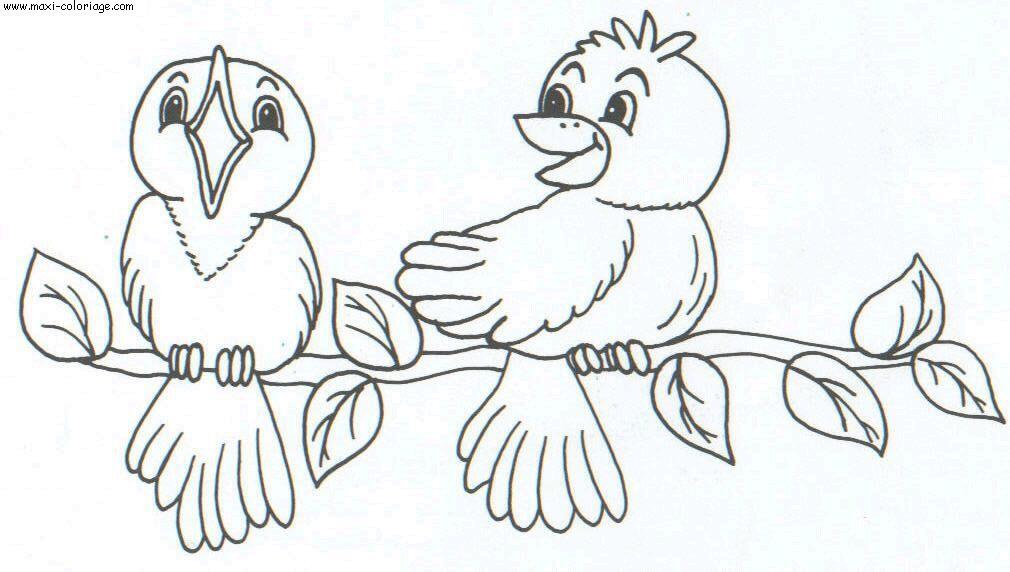 dessin oiseaux hugo