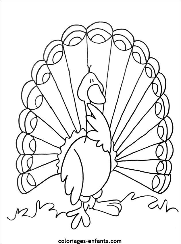 coloriage à dessiner oiseau de feu