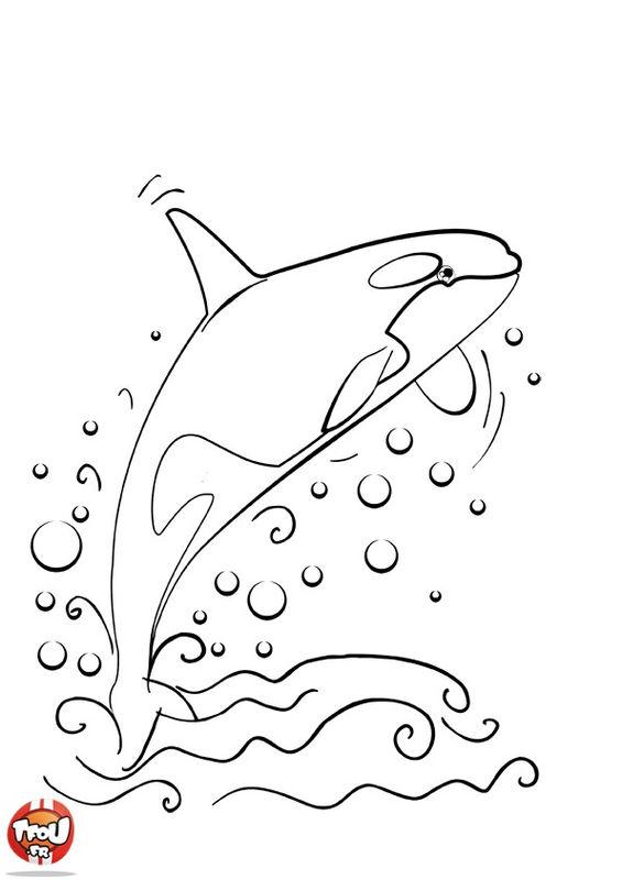 coloriage à dessiner d'orque en ligne