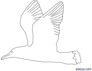 coloriage � dessiner orque imprimer