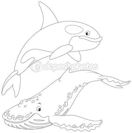 coloriage d'orque en ligne