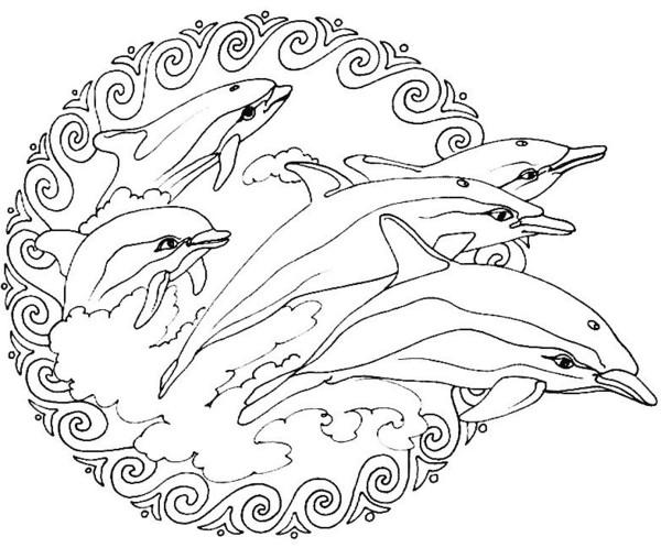 orque dessin dessin