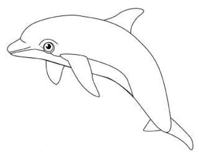 Jeux de dessin colorier d 39 orque - Dessin d orque ...