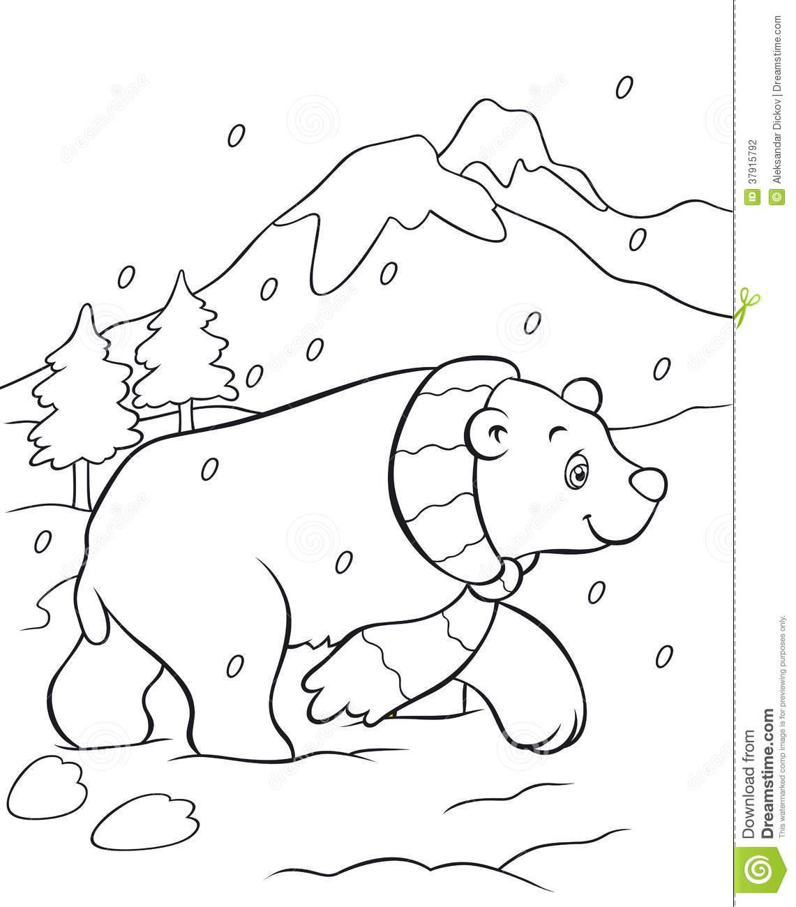16 dessins de coloriage ours polaire en ligne  u00e0 imprimer