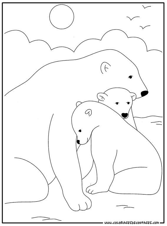 Imprimer coloriage dessiner ours polaire - Ours a dessiner ...
