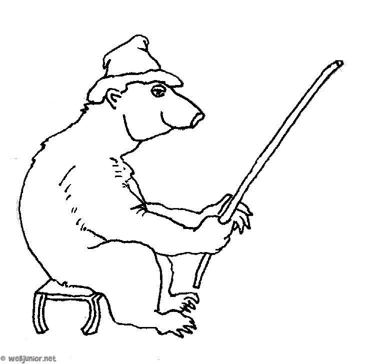 dessin � colorier ours polaire gratuit