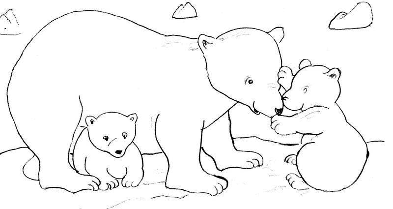 dessin à colorier l'ours polaire