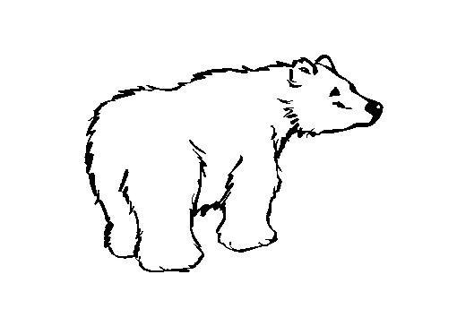 Dessin ours polaire blanc - Coloriage de ours ...