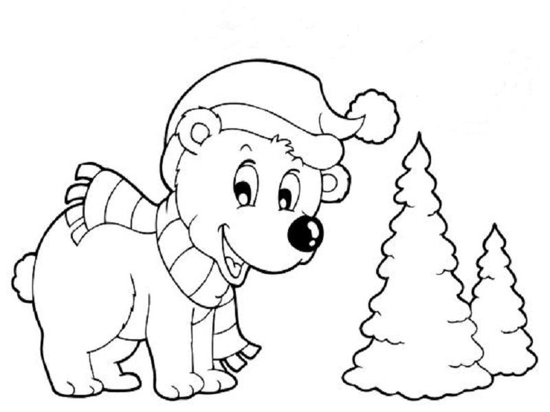 Dessin ours blanc polaire - Coloriage de ours ...