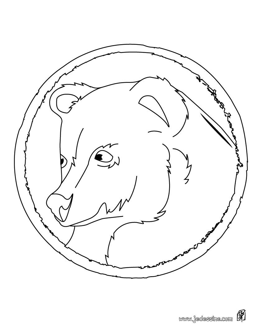 Dessin de plume ours polaire - Ours polaire dessin ...