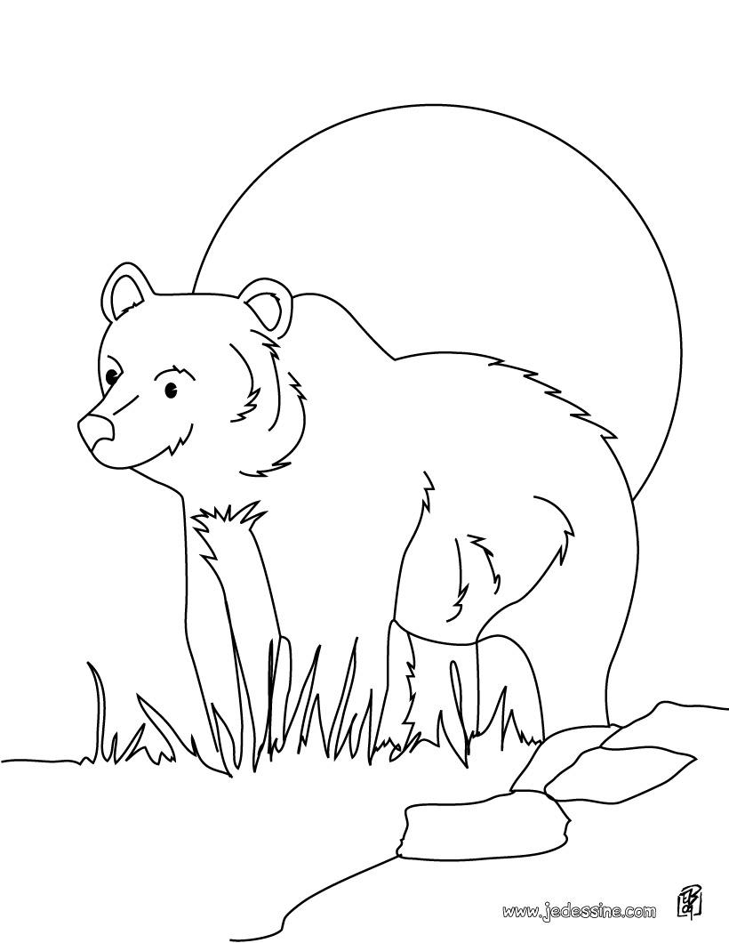 coloriage à dessiner 3 ours byron barton