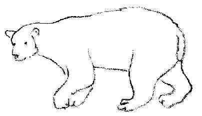 dessin � colorier ours avec cartable