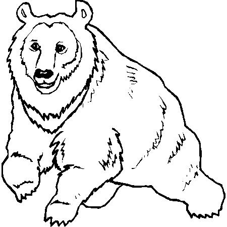 coloriage à dessiner d'ours avec un coeur