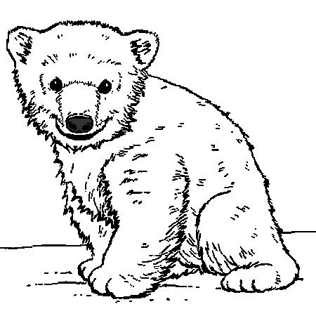 coloriage à dessiner ours avec coeur